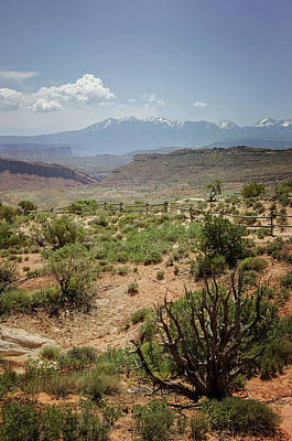 Photograph - Arches National Park 5 by Susan McMenamin