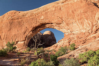 Photograph - Arches National Park-the Windows by Levin Rodriguez