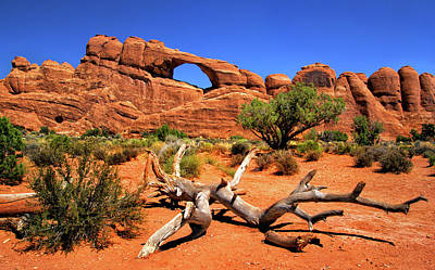Photograph - Arches National Park Windows Section View by Carolyn Derstine