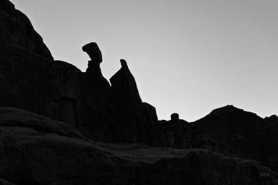 Photograph - Arches Np Xvi Bw  by David Gordon