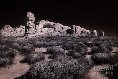 Photograph - Arches Within Arches by William Fields