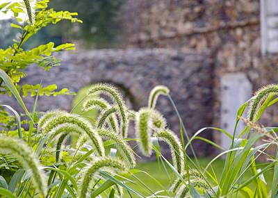 Stone Barn Photograph - Archway by Don Mennig