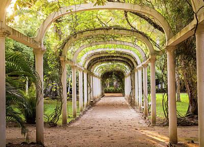Photograph - Archway In Botanical Gardens, Rio De Janeiro by Alexandre Rotenberg