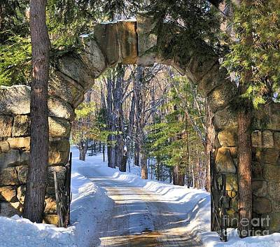 Photograph - Archway To Winter by Debbie Stahre