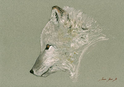 Arctic Fox Head Original by Juan  Bosco