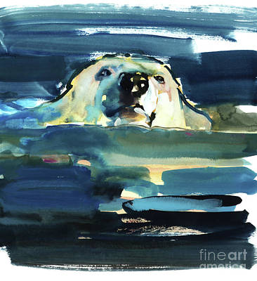 Arctic Swim Art Print by Mark Adlington