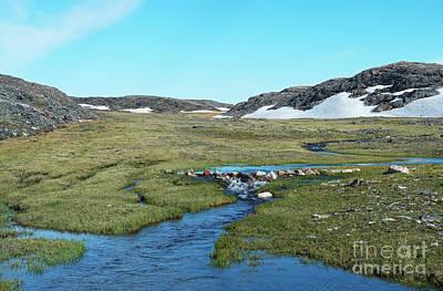 Photograph - Arctic Wilderness by Nina Stavlund