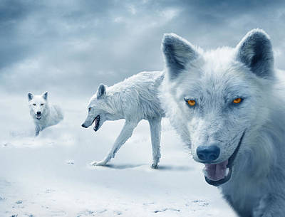 Classical Masterpiece Still Life Paintings - Arctic Wolves by Mal Bray