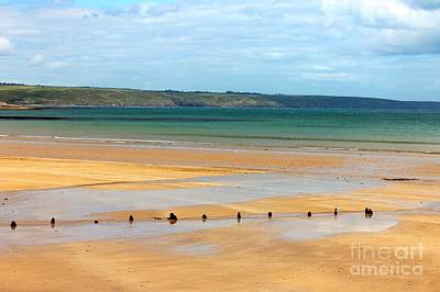 Ardmore Photograph - Ardmore Beach by Mary North