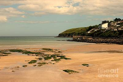 Ardmore Photograph - Ardmore Cliff View by Mary North