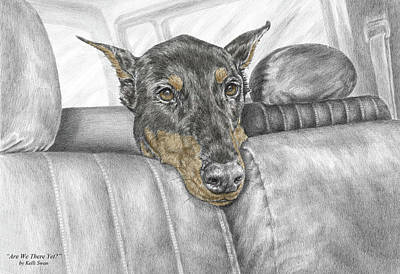 Pinscher Drawing - Are We There Yet - Doberman Pinscher Dog Print Color Tinted by Kelli Swan