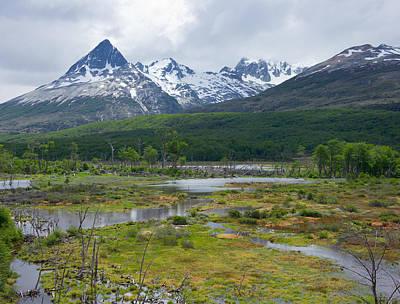 Photograph - Argentine Wetlands by Kent Nancollas