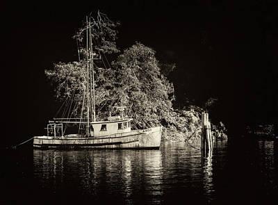 Photograph - Argo - 365-168 by Inge Riis McDonald