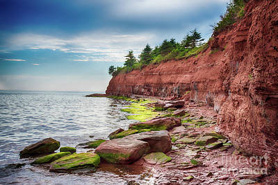 Photograph - Argyle Shore by Bianca Nadeau