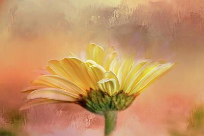 Arising In Beauty Art Print by Terry Davis