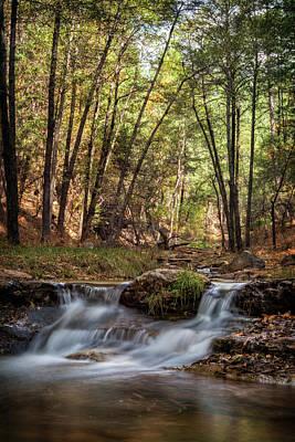 Photograph - Arizona Autumn Memoirs  by Saija Lehtonen