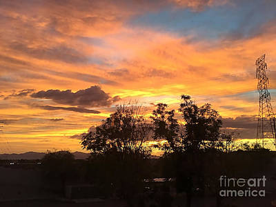 Photograph - Arizona Awesome by Anne Rodkin