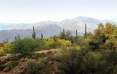 Art Print featuring the photograph Arizona Back Country by Gordon Beck