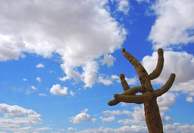 Sky Scape Photograph - Arizona Blue Sky by Susanne Van Hulst