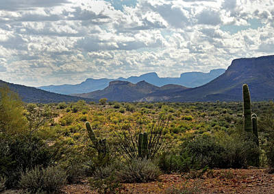 Arizona Calling Art Print by Gordon Beck