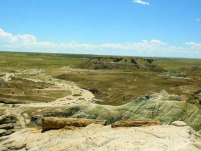 Photograph - Arizona Desert Dry Wash by Merton Allen