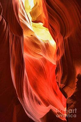 Photograph - Arizona Desert Flames by Adam Jewell
