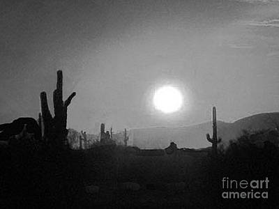 Photograph - Arizona Desert In Moonlight by Merton Allen