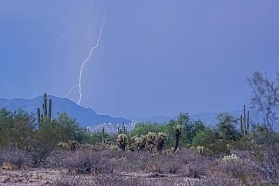 Arizona Desert  Print by James BO  Insogna