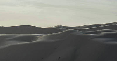 Photograph - Arizona Desert Sand Dunes by William Kimble