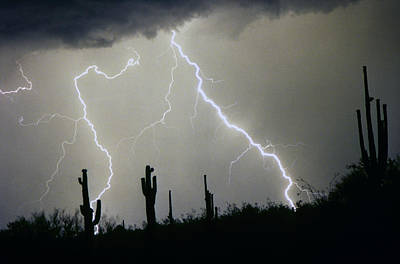 Arizona Lightning Photograph - Arizona Desert Storm by James BO  Insogna