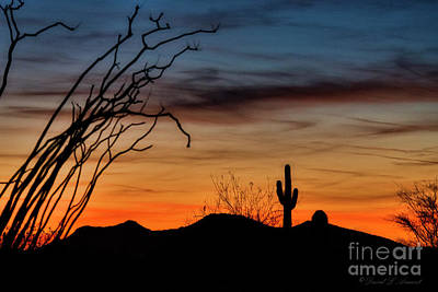 Photograph - Arizona Dusk by David Arment