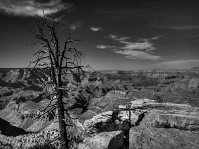 Photograph - Arizona - Grand Canyon 013 by Lance Vaughn