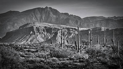 Photograph - Arizona Desert In Monochrome  by Saija Lehtonen