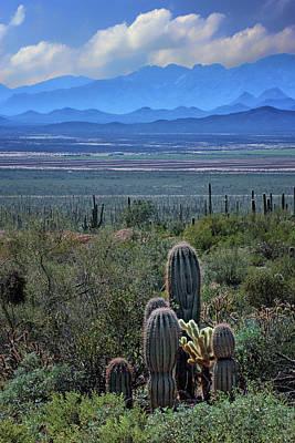 Photograph - Arizona Layers by Nikolyn McDonald