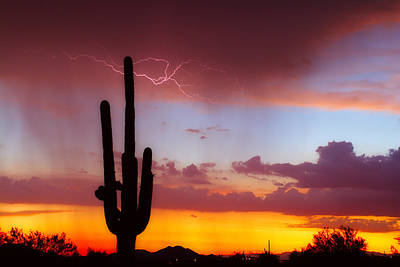 Photograph - Arizona Lightning Sunset by James BO  Insogna
