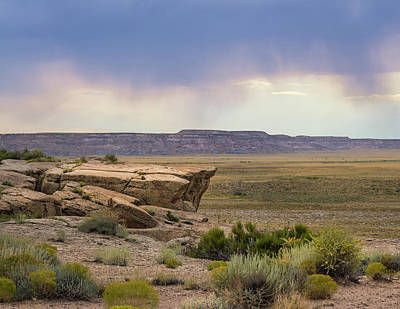 Petrified Forest Arizona Photograph - Arizona Rain by Joseph Smith