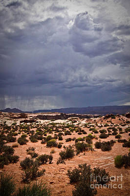 Arizona Rainy Desert Landscape Art Print by Ryan Kelly