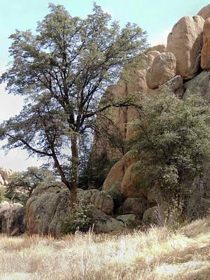 Photograph - Arizona Rock Outcrop by Gordon Beck