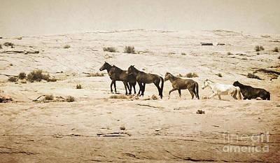 Photograph - Arizona Rustic Wild Horses Landscape by Andrea Hazel Ihlefeld