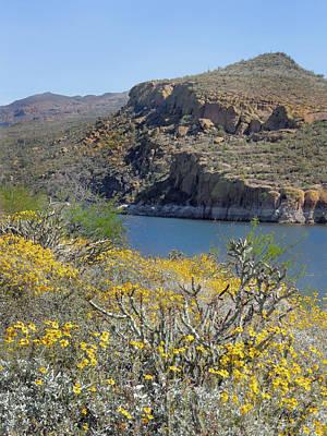 Verde River Photograph - Arizona Spring by Gordon Beck