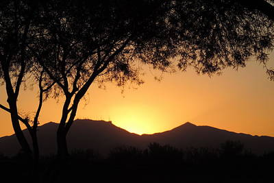 Photograph - Arizona Sunset by Bill Tomsa