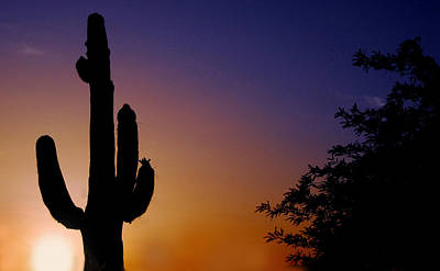 Arizona Sunset Art Print