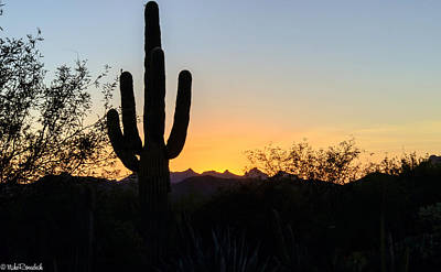Photograph - Arizona Sunset by Mike Ronnebeck