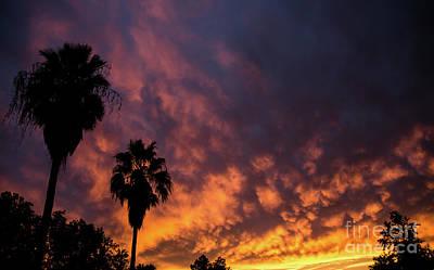 Photograph - Arizona Sunset by Nick Boren