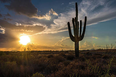 Photograph - Arizona Vibes by Bryan Xavier