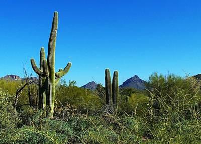 Digital Art - Arizona Vista by Max DeBeeson