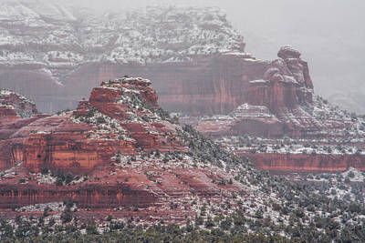 Photograph - Arizona Winter by Racheal Christian