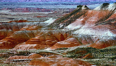 Photograph - Arizona's Painted Desert by Susan Warren
