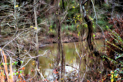 Photograph - Arkansas Bayou by Gina O'Brien