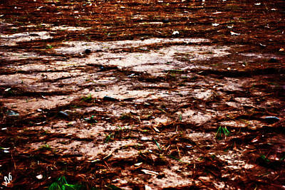 Photograph - Arkansas Mud by Gina O'Brien